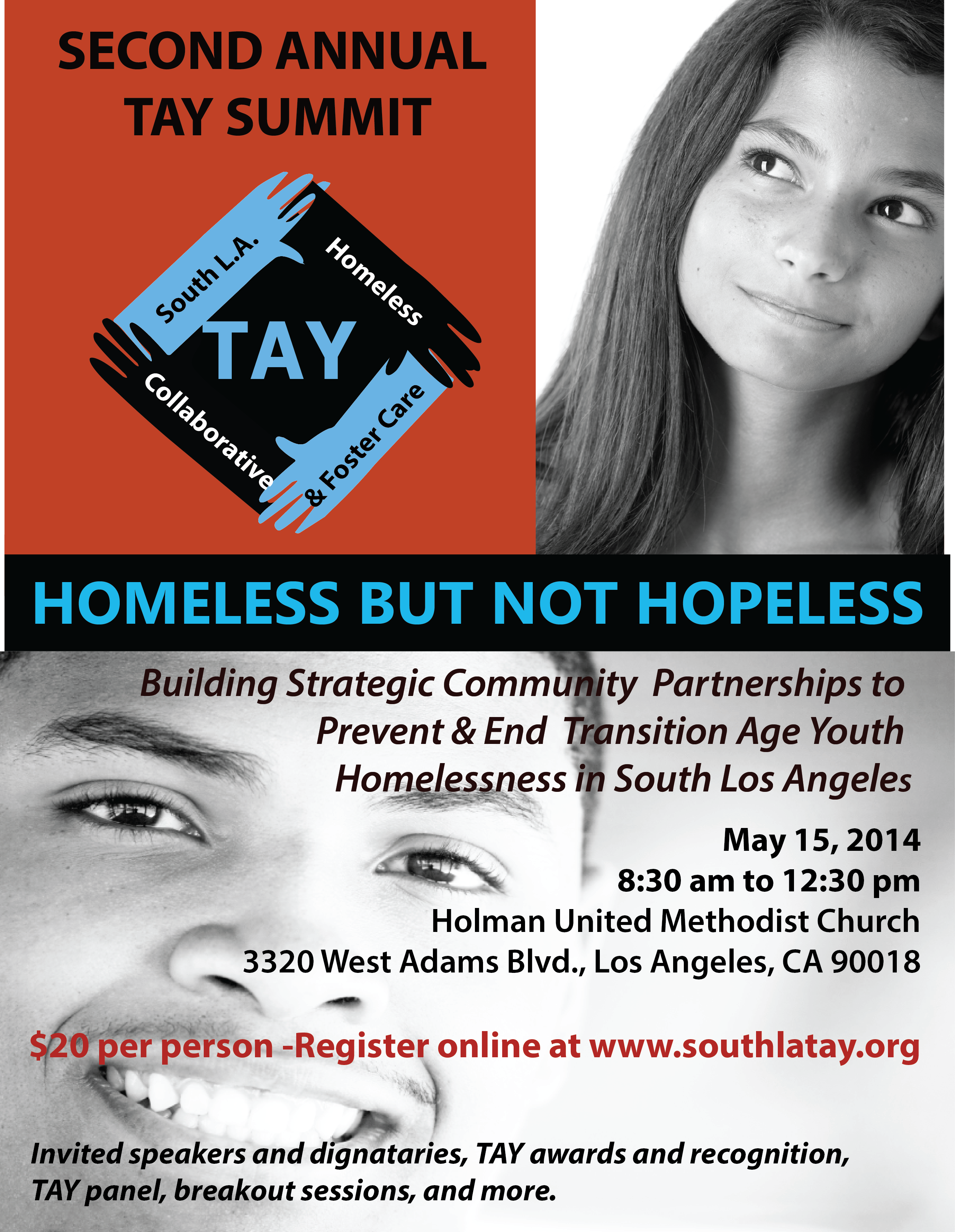 2014 South LA TAY Summit Save the Date April 2014